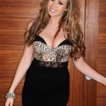 Leah Francis Animal Print Bodysuit With A Tight Skirt - 0