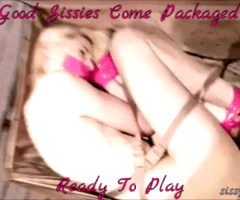 TIed up and packaged sissy