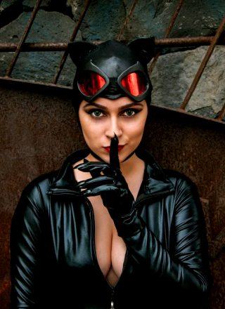 Catwoman By Nessa Lied
