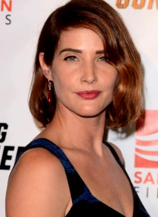 Cobie Smulders – 'Killing Gunther' Screening In LA