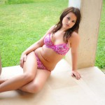 Robyn Hunt Pink Floral Bra And Thong - 4