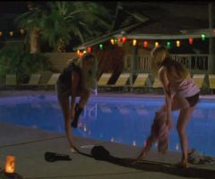 Amber Heard And Amanda Seyfried Topless