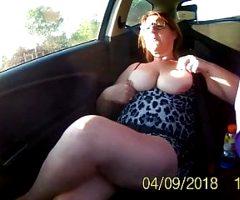 grosse chienne en voiture