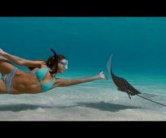 Jessica Alba's Great Bikini Plot In Into The Blue