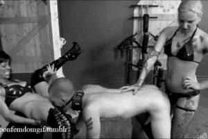 Porn GIF Magazine – thegbghunk
