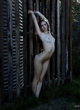 Nude Muse